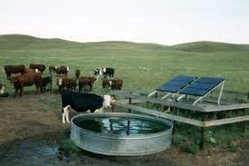 Solar Water Pumps To Be Installed On Farms By Pgvcl